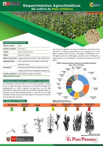 Requerimientos Agroclimáticos del cultivo de Maíz Amiláceo