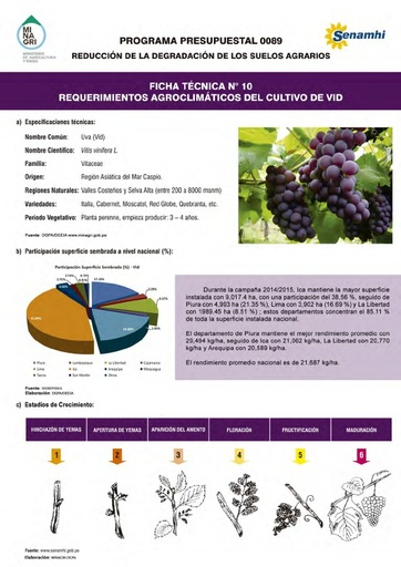Ficha Técnica Nº 10 - Requerimientos Agroclimáticos del cultivo de Vid
