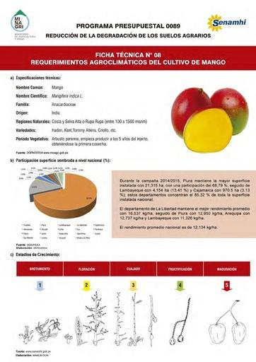 Ficha Técnica Nº 08 - Requerimientos Agroclimáticos del cultivo de Mango